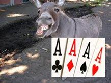 donkey_dealer