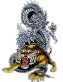 dragon540