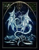 Dragonbets
