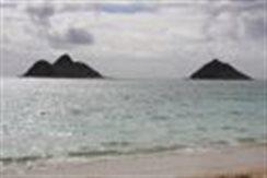Hawaiianguy