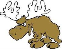 Moose25