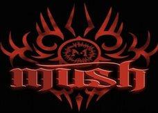 Mush516
