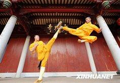 ShaolinMaster