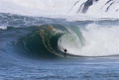 SURFNTURF