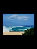 SURFNTURF808