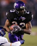 TcuFrogs